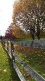 Zaun fencline Bauernhof Stockbilder