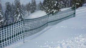 Zaun im Schnee und in den Tannenbäumen weg Stockfotos