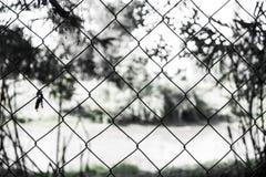 Zaun im Wald stockbilder