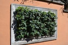 Zaun mit einem Fenster Stockfotografie
