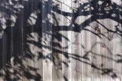 Zaun mit Schatten Stockfoto