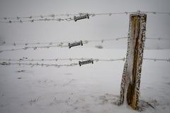 Zaun mit Stacheldraht im Winter Lizenzfreie Stockbilder