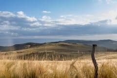 Zaun mit Unkräutern und Anlagen auf den Bergen von Cordoba Argentinien Stockfotos