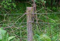 Zaun-Post With Chicken-Draht Stockfotografie