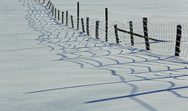 Zaun-Shadows Snow Winter-Bauernhof Stockfoto