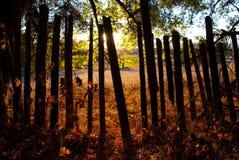 Zaun am Sonnenuntergang Stockfotos
