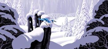 Zaun und blauer Jay Lizenzfreie Stockfotos