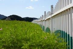 Zaun und Garten stockbilder