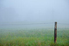 Zaun und Nebel am Frühlingsmorgen stockbilder
