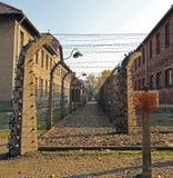 Zaun von barbwire im Konzentrationslager Auschwitz I Stockfoto