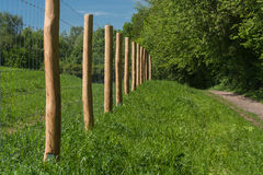 Zaun von einer Weide               Fence of a pasture Royalty Free Stock Photography