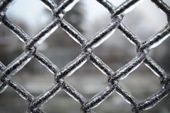 Zaunmasche umfasst mit Eis, lizenzfreies stockfoto