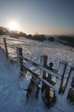 Zauntritt im Schnee stockfotos