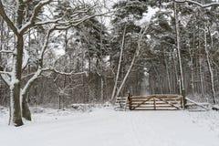 Zauntritt mit einem hölzernen Tor in einem schneebedeckten Wald Stockfotografie