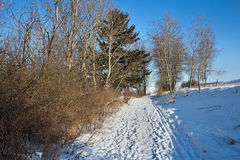 Zavazna Poruba - Dubec, Slovakia. Beautiful snowy lane somewhere in the Liptov Slovak Royalty Free Stock Images