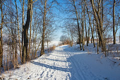 Zavazna Poruba - Dubec, Slovakia. Beautiful snowy lane somewhere in the Liptov Slovak Royalty Free Stock Photos