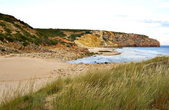 zavial strand Arkivbild