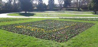 A square of flowers. Zavoi park in Ramnicu Valcea, green fields,flowers embellish the atmosphere,trees, landscape stock photo