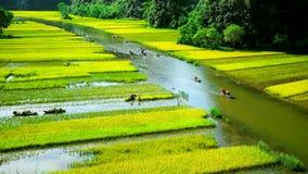 Zawala się turystyczne łodzie w Tama Coc, Ninh Binh, Wietnam Fotografia Royalty Free