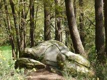Zawalone skały Neolityczny grobowiec otaczający lasem w Brittany, Francja obraz royalty free
