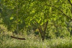 Zawdzięczający sobie huśtawka w parku Zdjęcia Royalty Free