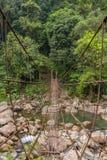 Zawieszenie most blisko Nongriat wioski, Cherrapunjee, Meghalaya obraz stock