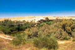 Zawieszenie most i Besor strumyk w Eshkol parku narodowym, pustynia negew fotografia royalty free