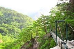Zawieszenie most, Kumgangsan góry, korea północna zdjęcie royalty free