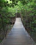 Zawieszenie most las. zdjęcia stock