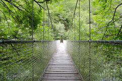 Zawieszenie most, linowy most. Zdjęcia Stock