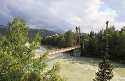 Zawieszenie most między wyspami na halnym rzecznym Katun fotografia royalty free