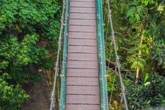 Zawieszenie most nad lasem w Kuala Lumpur obrazy stock