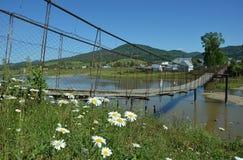 Zawieszenie most nad rzeką Obrazy Royalty Free