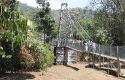 Zawieszenie most ogródy botaniczni zdjęcia stock