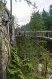 Zawieszenie most przy Capilano zawieszenia mosta parkiem Zdjęcie Stock
