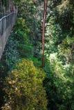 Zawieszenie most, Taman Negara park narodowy, Malezja obrazy royalty free