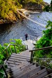 Zawieszenie most w burzy Rzecznego usta parku narodowym zdjęcie stock