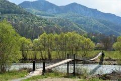 Zawieszenie most w Transylvania zdjęcia stock