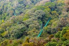Zawieszenie mosty w dżungli widok z lotu ptaka obraz royalty free
