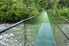 Zawieszenie nożni mosty pozwolą przeglądać różnorodność biologiczną w Tirimbina Biologiczna rezerwa w Costa Rica z góry zdjęcia stock