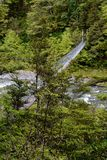 Zawieszona huśtawkowego mostu brać strona nad rzeką w Nowa Zelandia dalej, obraz royalty free
