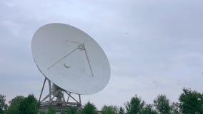 Zawodnik bez szans satelitarny szyk z drzewami zbiory