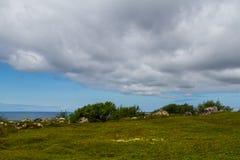 Zayatsky-Insel, Solovetsky-Archipel Lizenzfreies Stockbild
