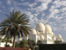 zayed moskésheikh Royaltyfri Bild