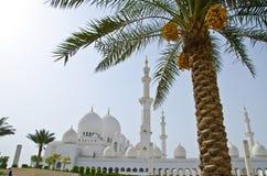 zayed sheikh för moské för abustadsdhabi Arkivfoton