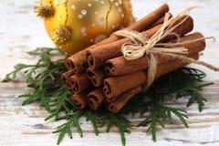 Zazębianie kije cynamon na jedlin gałąź, zamyka up na drewnianym lekkim tle z choinki dekoracją na b, Obrazy Royalty Free