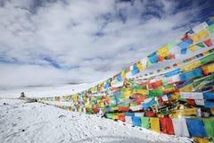 zaznacza Tibet modlitewnego tibetan zdjęcia royalty free