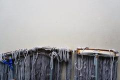 Zazzere sulla parete del cemento Fotografia Stock Libera da Diritti