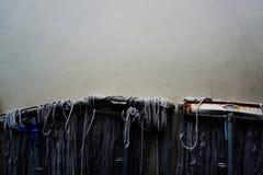 Zazzere sulla parete del cemento Immagini Stock Libere da Diritti