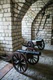Zbarazh,乌克兰- 2017年7月06日:中世纪堡垒在Zbarazh,捷尔诺波尔地区,西部乌克兰(城堡全景) 图库摄影